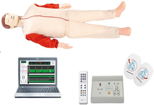 KAR-ALS2000高级心肺复苏、AED除颤模拟人