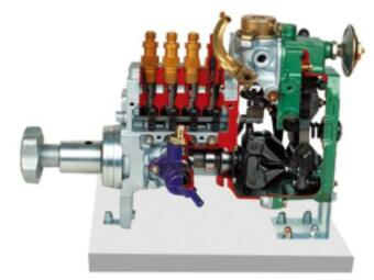 直列喷射泵解剖模型(RSV)